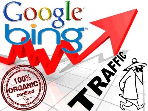 busquedas organicas desde google
